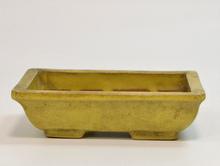 黄外縁切足 盆栽鉢