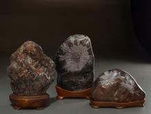 菊花石各種